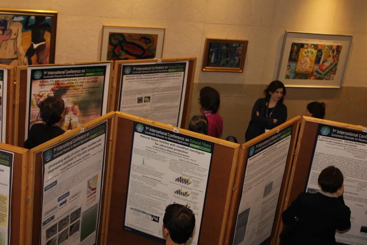 media/poster_session_icnf_2013.jpg